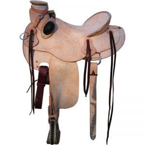 Western Saddle Category