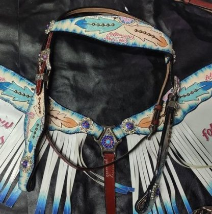 Follow Your Dreams Headstall Breast Collar Fringe Set-14