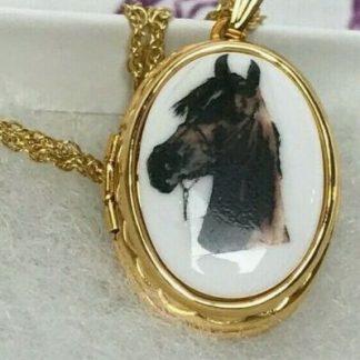 "Bay Arabian Horse Head Locket 11"" inch chain Free Shipping"