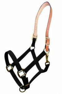 Showman Triple Ply Nylon Western Halter w/ Leather Crown