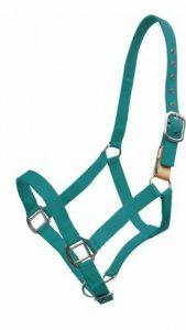 Showman 3-Ply Nylon Breakaway Western Horse Halter