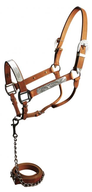 Show Halter with Matching Lead-Light Oil
